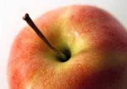 Gyömbéres almalekvár