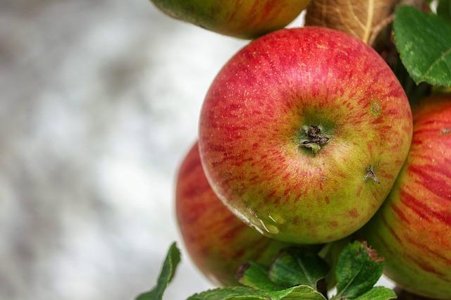 Fahéjas almatorta - tojás nélkül