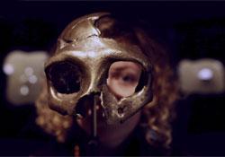 A neandervölgyi és a korai modern ember békésen megfért egymás mellett