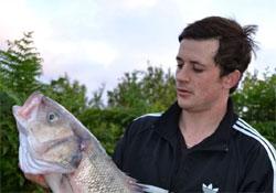 Akváriumból lopott halat, hogy győzzön a horgászversenyen