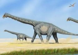 Kiderült, miért volt hosszú nyakuk a dinoszauruszoknak