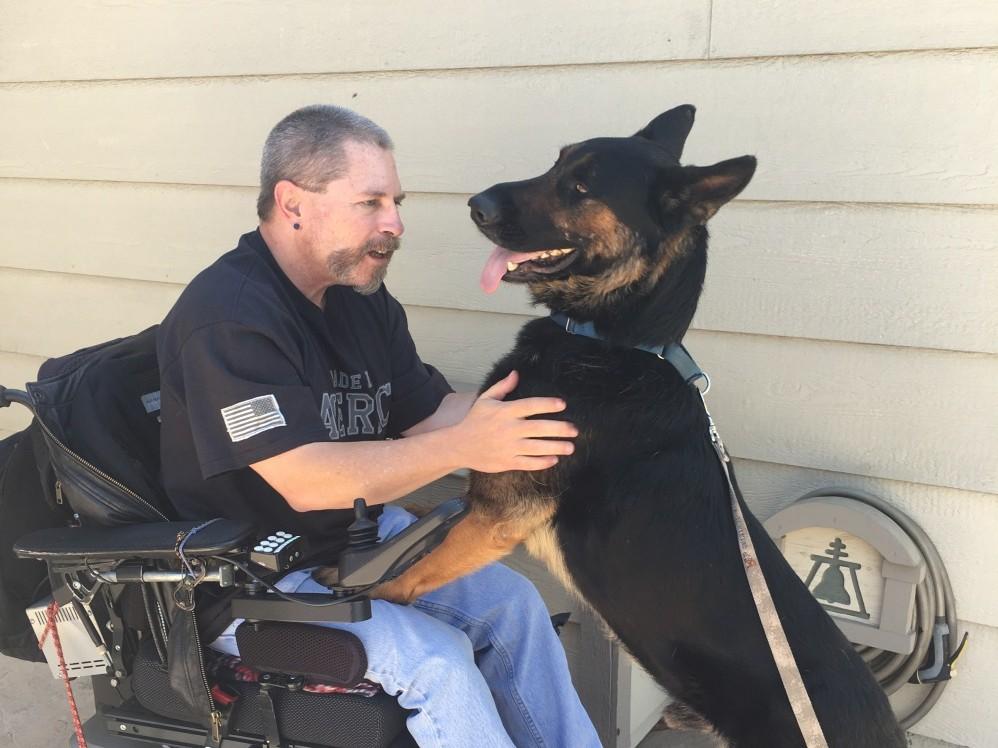 Menhelyi kutyából is lehet segítő