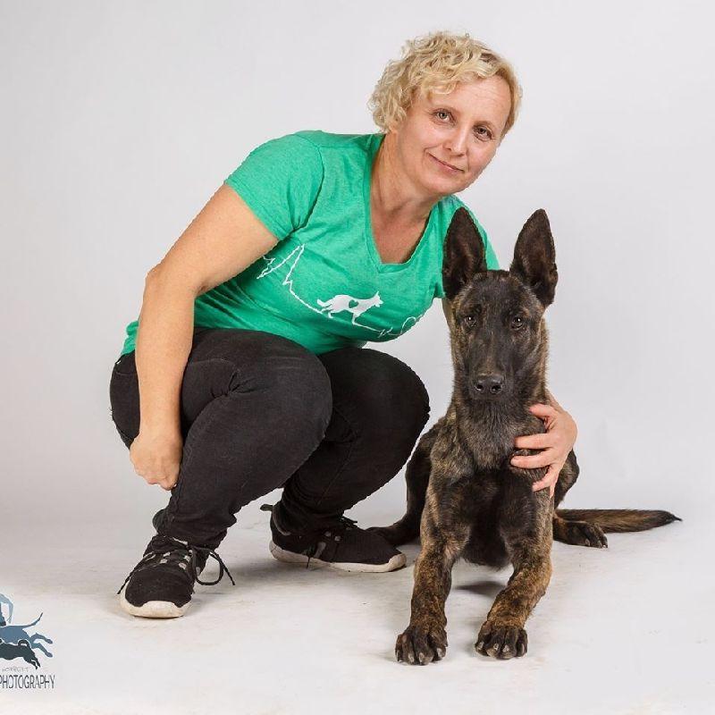 Pirka Ildikó kuyaviselkedési szakértő 10 alapszabálya, hogy a kutyád boldog legyen