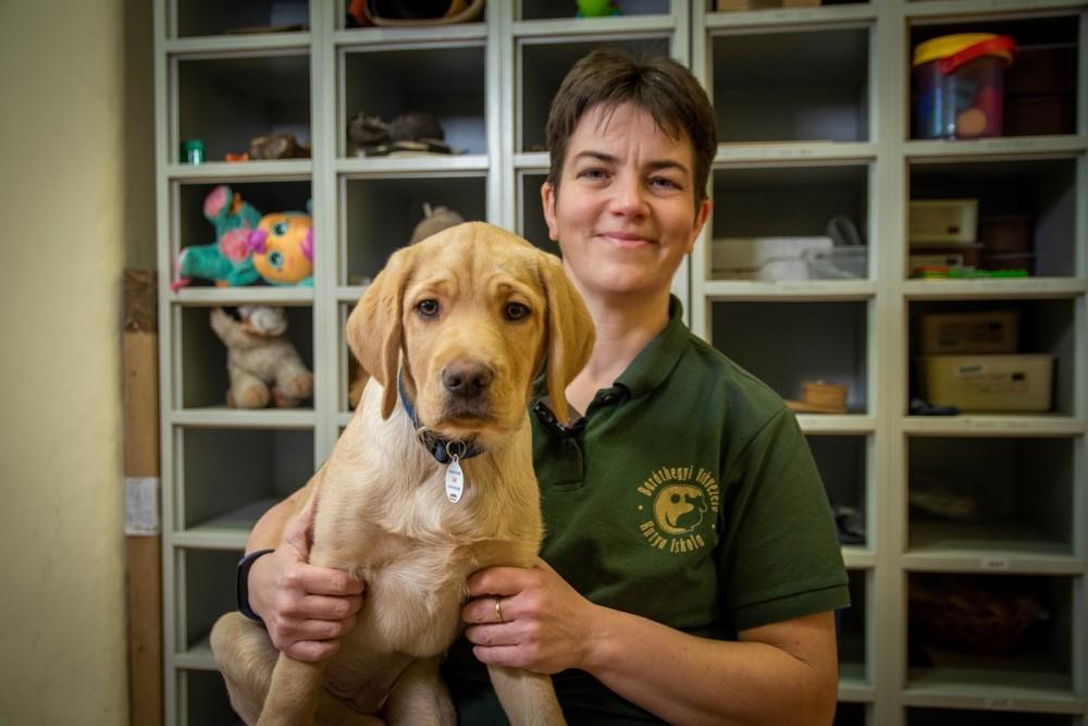 Home office-ban képzik most a vakvezető kutyákat