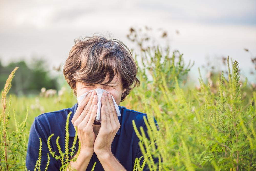 Valóban nagyobb veszélynek vannak kitéve az allergiások?