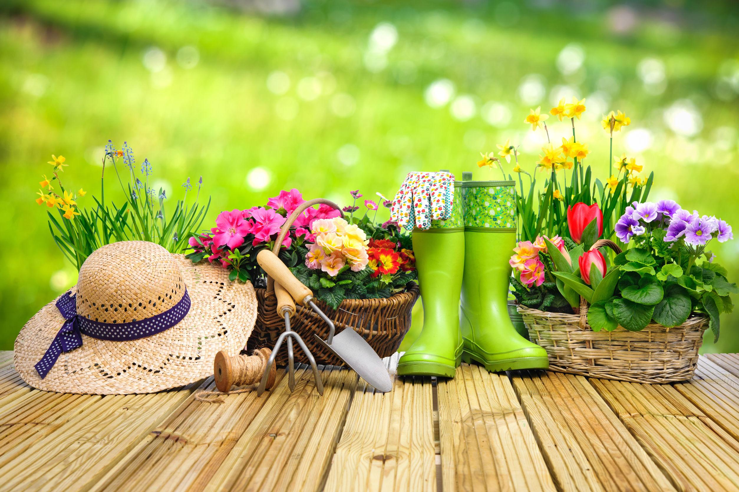 Így teremts ragyogó kertet lépésről lépésre!